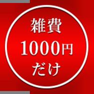 雑費1000円だけ